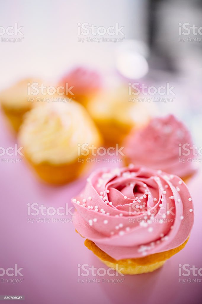 Beautiful Pink and White Cupcakes stock photo