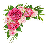 istock Beautiful pink and white rose flowers with eucalyptus leaves in a corner arrangement 1136700962