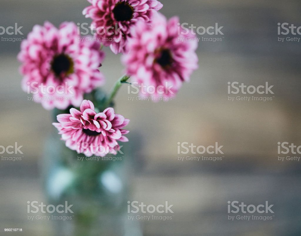 Beautiful Pink Bouquet Of Flowers In Glass Vase Stock Photo More