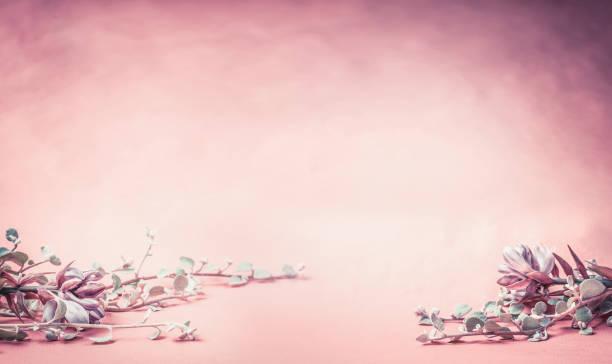 schöne rosa blumenkarte mit blüten und blättern, banner - romantische karten stock-fotos und bilder