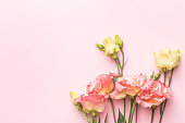 Beautiful pink flower bouquet on pastel background with copyspace top view. Holiday and love