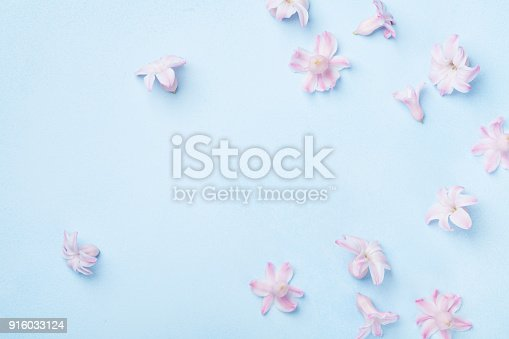 istock Beautiful pink flowers on blue background top view. Pastel colors. Flat lay style. Mother or woman day greeting card. 916033124