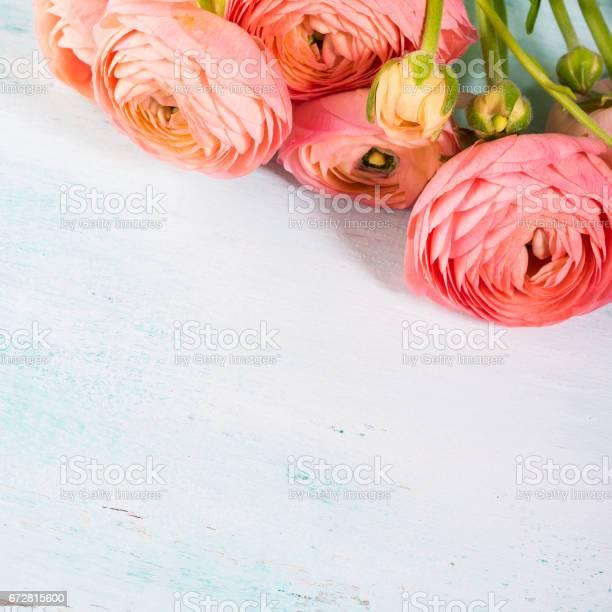 Beautiful pink ranunculus bouquet on turquoise picture id672815600?b=1&k=6&m=672815600&s=612x612&h=4nvhaaz8icrglz7n2oawtr7qh1lt8cdkbkhpeaq9jjy=
