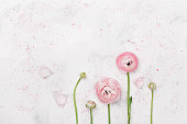 istock Beautiful pink ranunculus flowers on white table. Wedding mockup in flat lay style. 680461168
