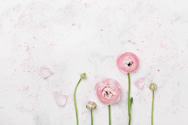 白いテーブルの上の美しいピンクのラナンキュラスの花。フラット レイアウト スタイルで結婚式のモックアップ。 - ウェディングファッション ストックフォトと画像