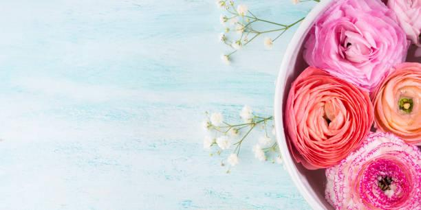 beautiful pink ranunculus in bowl with water - hochzeitsbox stock-fotos und bilder