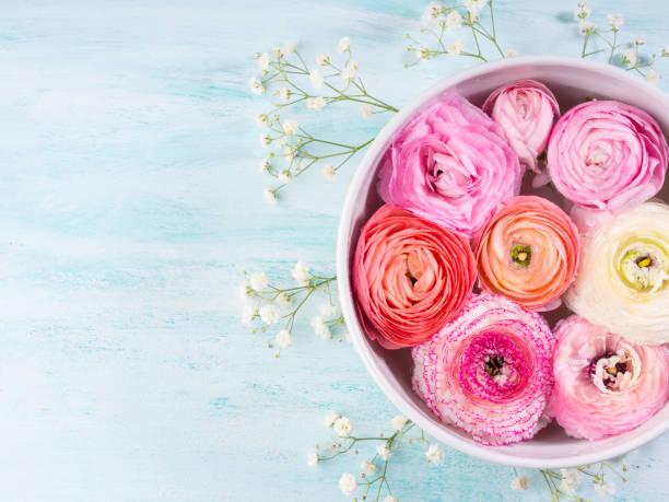 Beautiful pink ranunculus in bowl with water picture id683254016?b=1&k=6&m=683254016&s=612x612&w=0&h=pfqaxymife9rgjlqmmzkb qw27srffxsehwk8jkmffq=