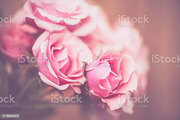 Beautiful pink roses background picture id513064522?b=1&k=6&m=513064522&s=612x612&h=zmxmhmyzovdqlgcm6ach6ljhuufyh8dorgm9zs7vp40=