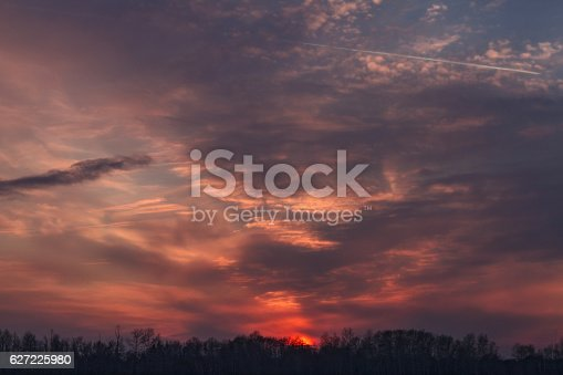 istock Beautiful pink sunset over the forest. 627225980
