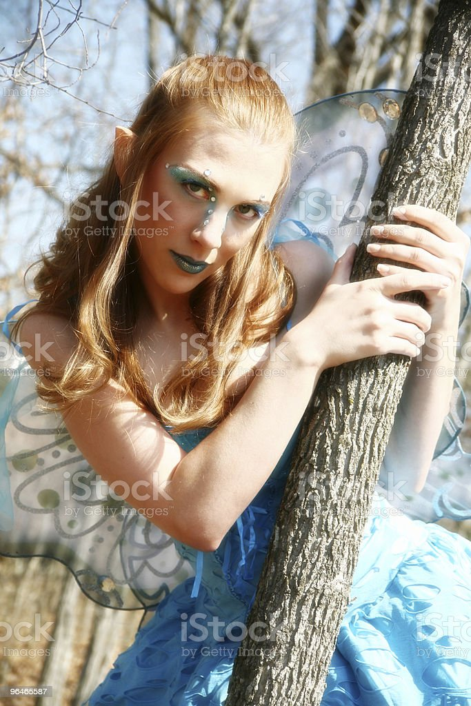 Beautiful Pixie or Elf royalty-free stock photo
