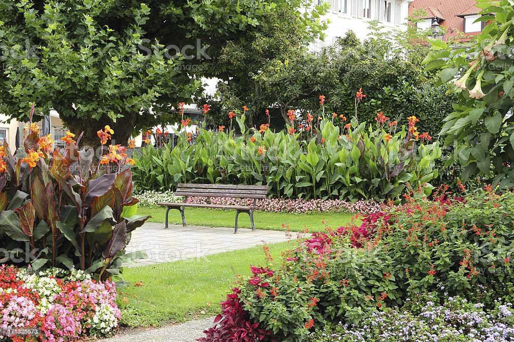 Beautiful Place In The Flower Garden Stock Photo & More Pictures of ...