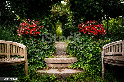 winding flowerfull stone path through a plant arch with benches