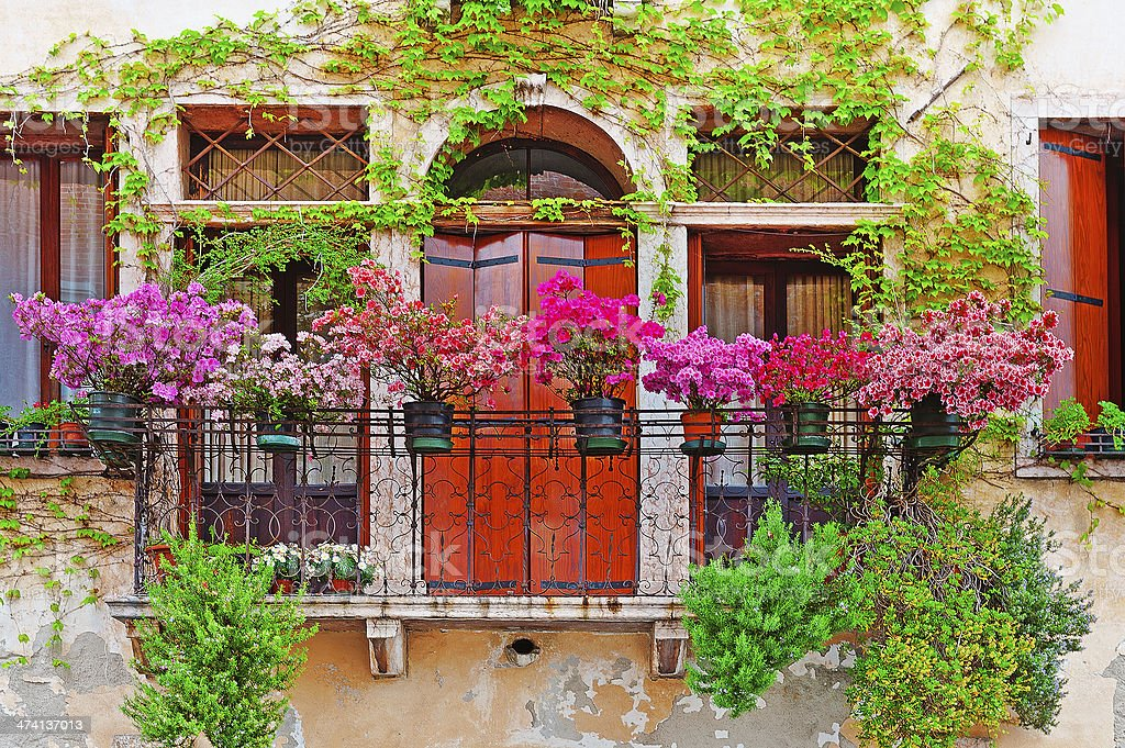 Beautiful plants and greenery on a wire balcony and red door stock photo