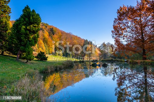 A beautiful pond in the arboretum of Aubonne, Switzerland and beautiful  autumn colors and reflections in the water.