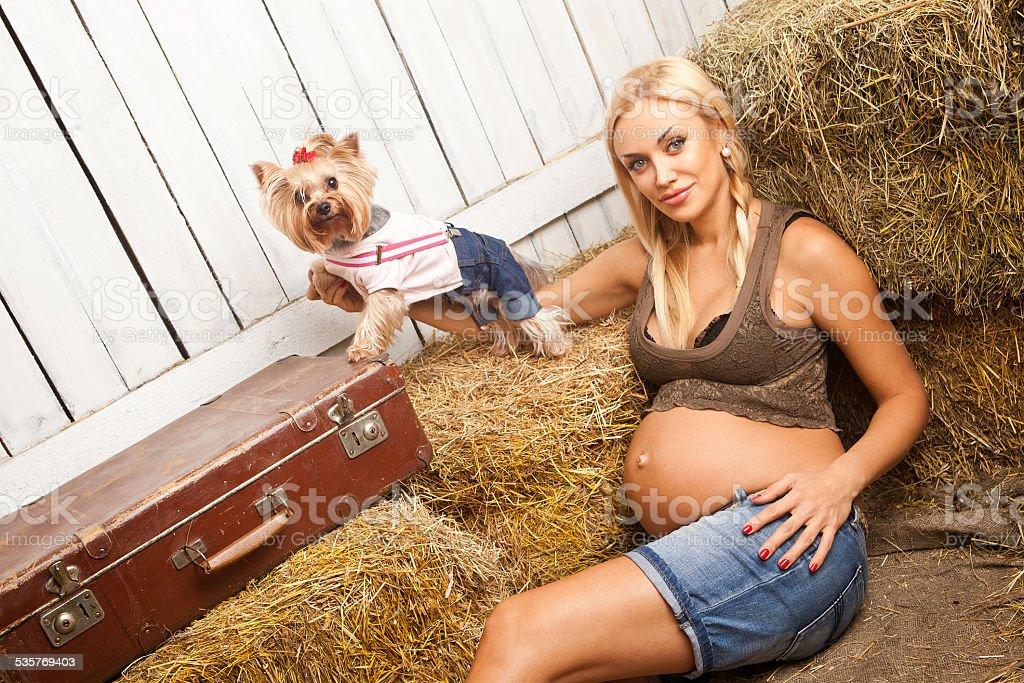 beautiful pregnant blonde woman stock photo
