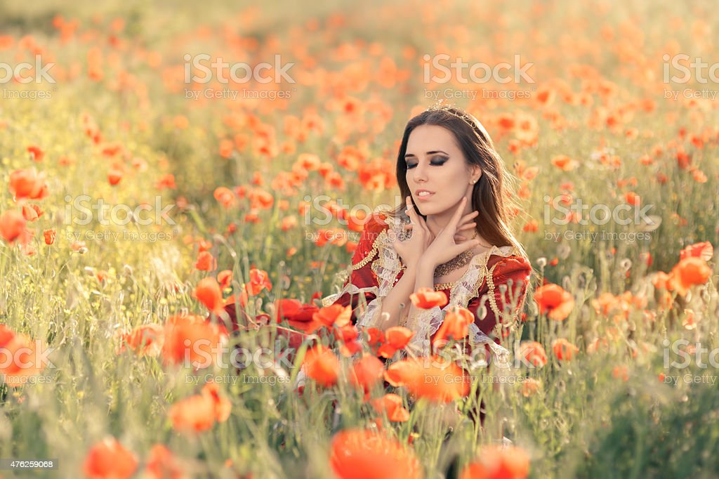 Beautiful Princess in a Field of Poppies stock photo