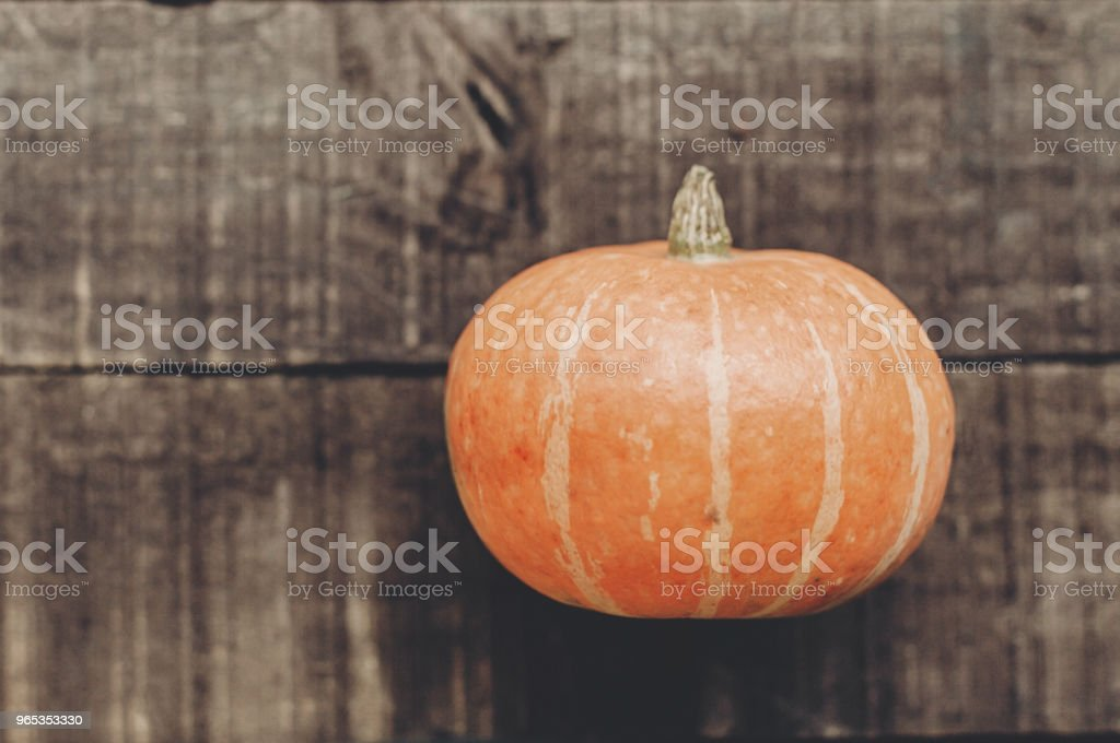beautiful pumpkin on rustic wooden background, top view. space for text. cozy autumn mood. fall holiday. stylish halloween or thanksgiving concept greeting card. simple flat lay royalty-free stock photo