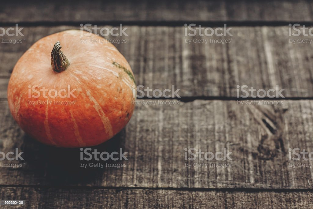 beautiful pumpkin on rustic wooden background, top view. space for text. halloween or thanksgiving concept greeting card. cozy autumn mood. fall holiday. stylish simple image zbiór zdjęć royalty-free