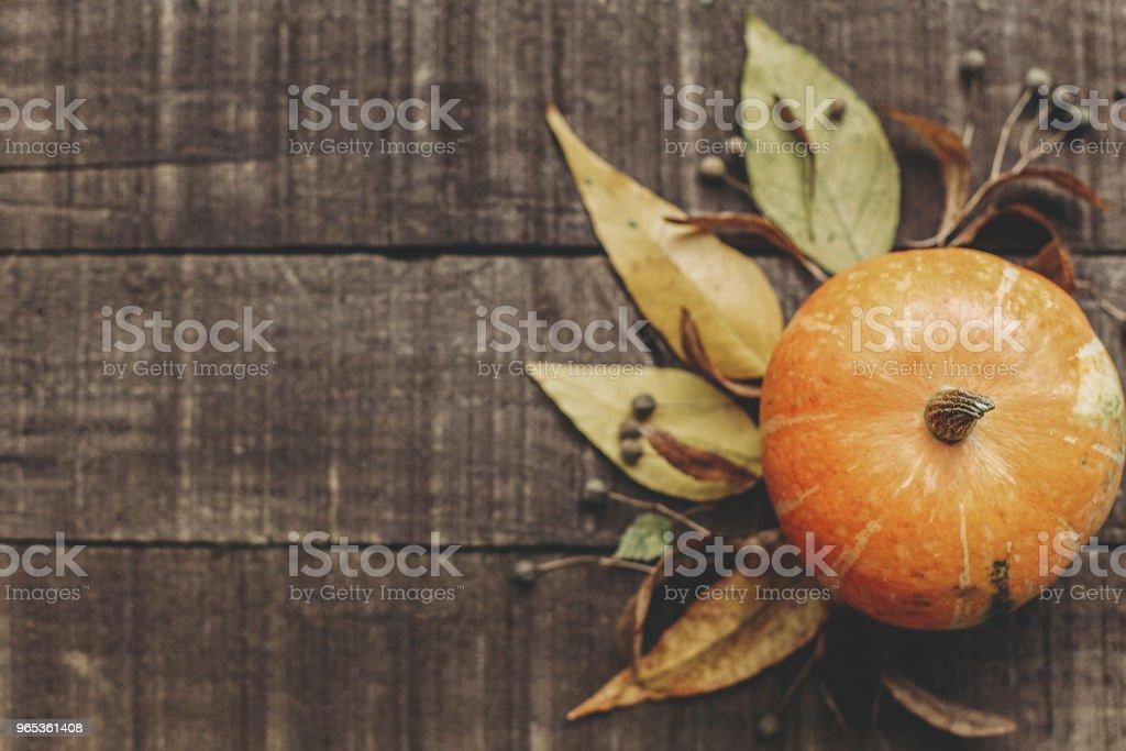 美麗的南瓜與樹葉和漿果在質樸的木質背景, 頂部的看法。文本的空間。感恩節或萬聖節概念賀卡。秋天形象平躺。舒適的秋天心情 - 免版稅俯拍圖庫照片