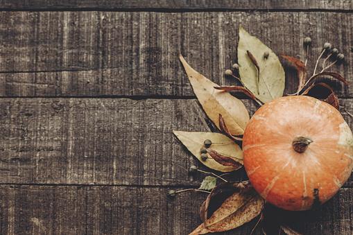 와 아름 다운 호박 잎과 소박한 나무 배경 평면도에 딸기 텍스트를 위한 공간입니다 추수 감사절 이나 할로윈 개념 인사말 카드입니다 가 이미지 평평 하다 아늑한가 분위기 10월에 대한 스톡 사진 및 기타 이미지