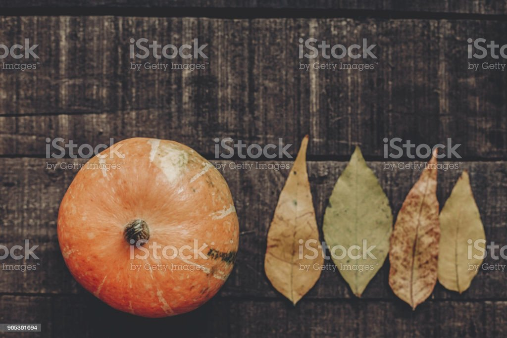 beautiful pumpkin with leaves on rustic wooden background, top view. space for text.  cozy autumn mood. halloween or thanksgiving concept greeting card fall flat lay. holiday. simple image zbiór zdjęć royalty-free