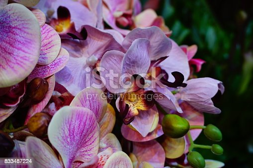 Artificial flower, Orchid Lady's Slipper, Thailand