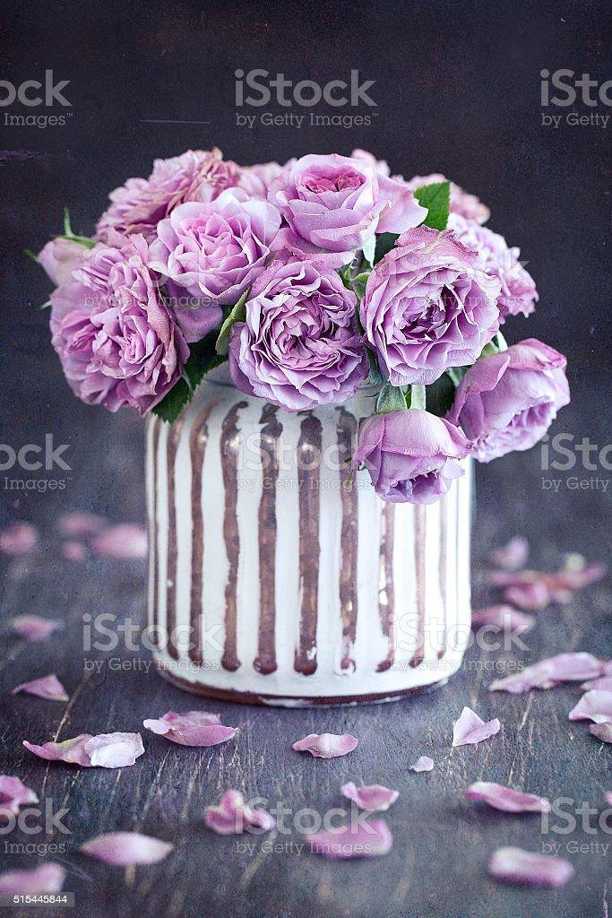 Beautiful purple rose stock photo