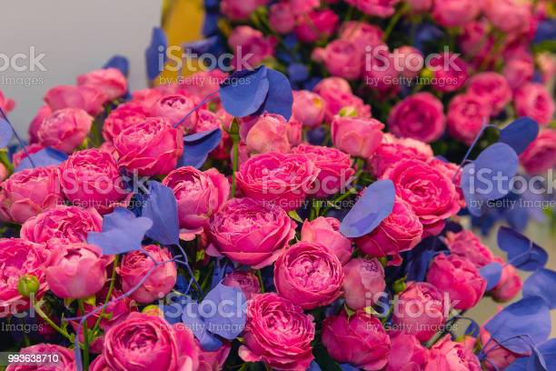 Beautiful purple roses with blue leaves in the shop floristics picture id993638710?b=1&k=6&m=993638710&s=612x612&h=94hntzjnqqu7ns o1w mwhudjmbx2x0zfnf tz3ylxa=