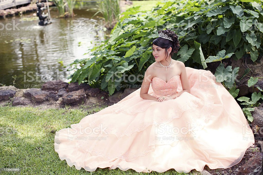 Beautiful Quinceanera stock photo