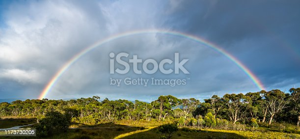 Beautiful rainbow over the horizon of rainforest in Tasman peninsular in Tasmania, Australia.