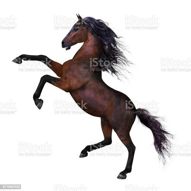 Beautiful rearing horse picture id874860330?b=1&k=6&m=874860330&s=612x612&h=d qrpb0jnzpxljtq8gelskq5gpz0gsx gvdrmjvfcck=