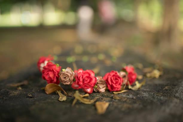 schöne rote blumen - herbst hochzeitseinladungen stock-fotos und bilder
