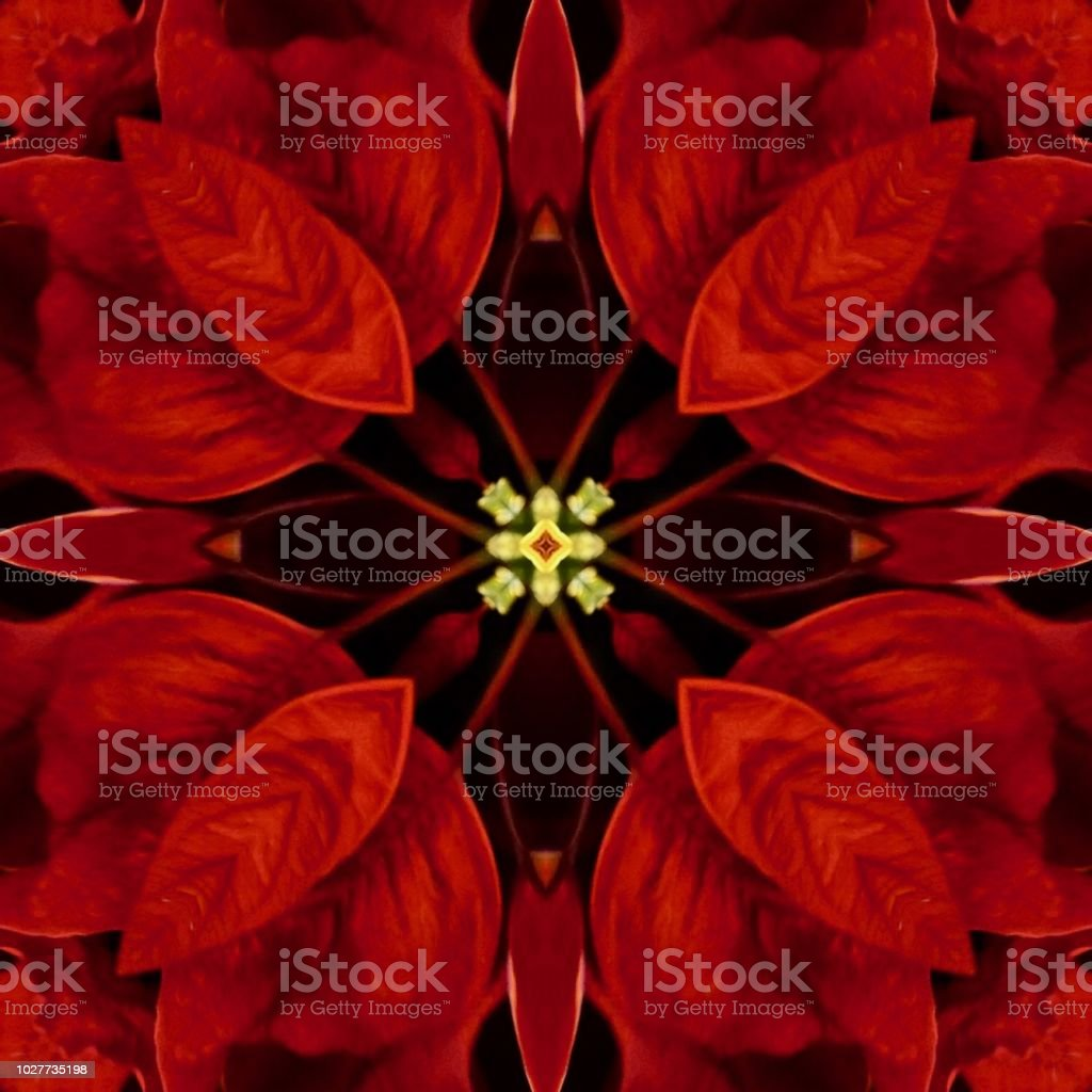 Beautiful red, gold, black abstract on red background with holiday Christmas pattern stock photo