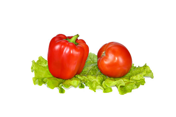 Beautiful red pepper and tomato on lettuce leaves.