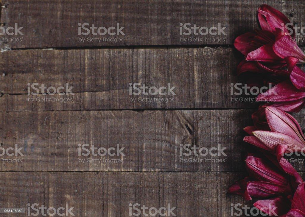 vacker röd lila Lilja blomma på rustika trä bakgrund platt låg. underbara Blom minimalistisk på rustika trä bakgrund. utrymme för text. gratulationskort. Celebration koncept. vår bild - Royaltyfri Bild Bildbanksbilder