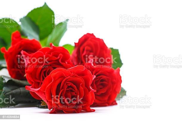 Beautiful red rose picture id614054634?b=1&k=6&m=614054634&s=612x612&h=iufr0sjknuuwhy5p zjnje 7rdozwb5o6d8hojx pze=