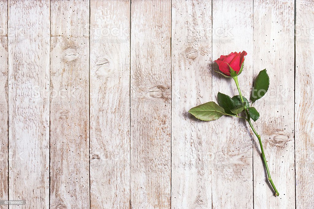 Beautiful red rose with ribbon and hearts on a wood stock photo
