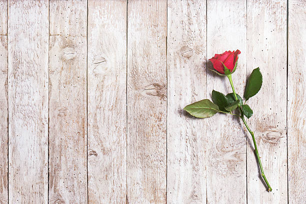 beautiful red rose with ribbon and hearts on a wood - enkele roos stockfoto's en -beelden
