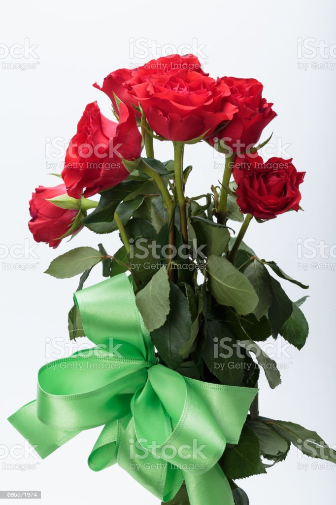 beautiful red roses on a white background royalty-free 스톡 사진