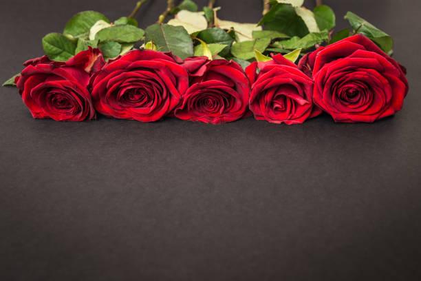 hermosas rosas rojas sobre fondo negro - duelo fotografías e imágenes de stock