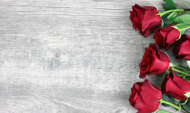 Beautiful Red Roses Over Rustic Wooden Background stock photo
