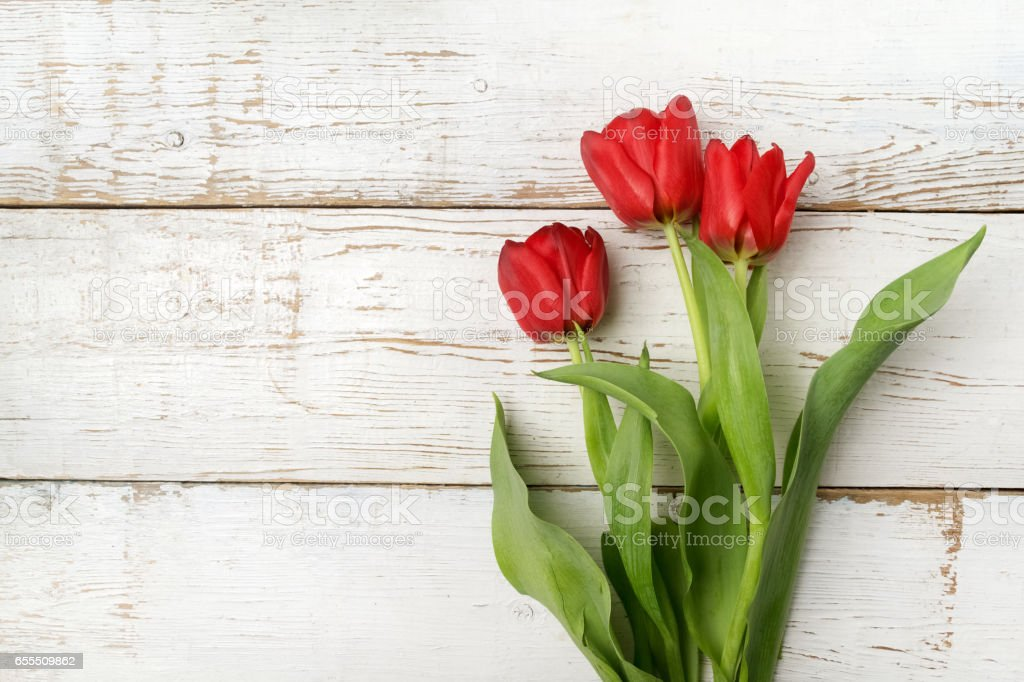 beautiful red tulips on white wooden background. Top view stock photo