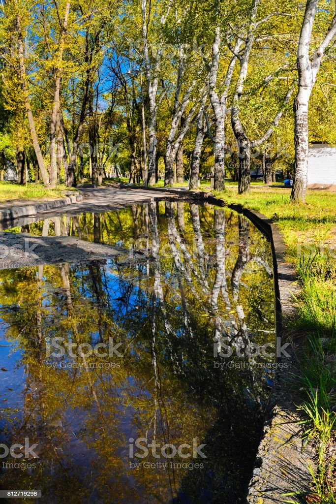 Beautiful reflection of trees in a puddle in a city park in the early morning stock photo
