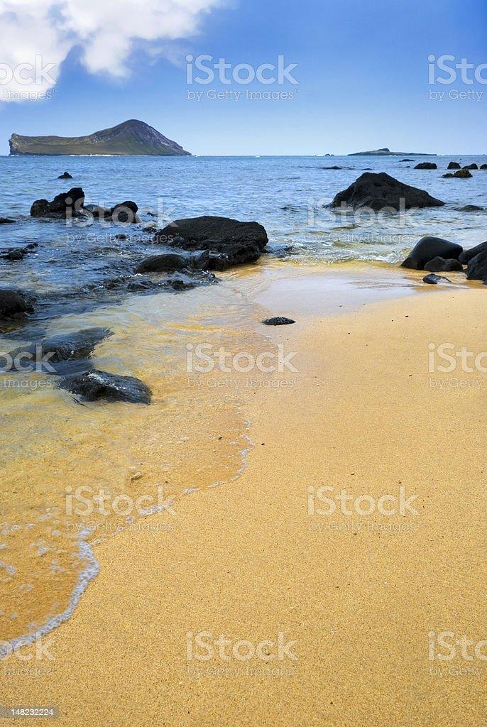 Beautiful Remote Sandy Beach royalty-free stock photo