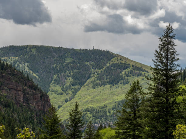 Beautiful, remote tree covered Colorado hills stock photo