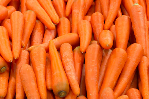 beautiful ripe carrot background - cenoura imagens e fotografias de stock