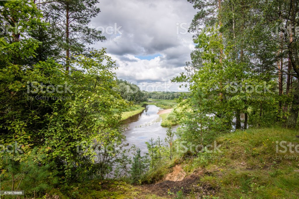beautiful river in forest royalty-free stock photo