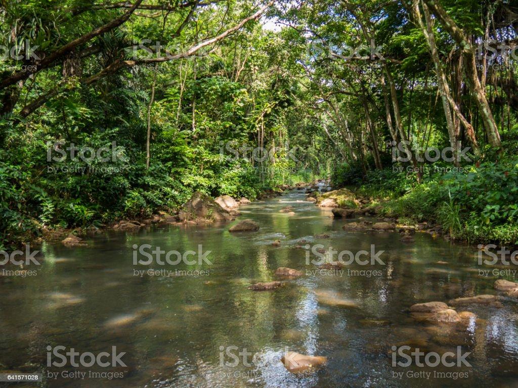 Beautiful river in Waimea Valley on Oahu island, Hawaii stock photo