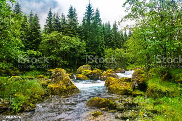 Photo of Beautiful river with big stones in amazing forest. Location: Scandinavian Mountains, Norway. Artistic picture. Beauty world.