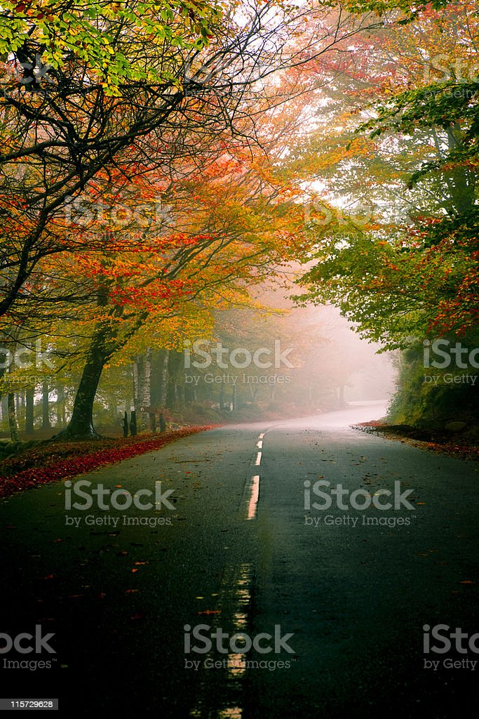 Beautiful road royalty-free stock photo